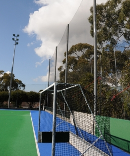 Hockey Net example